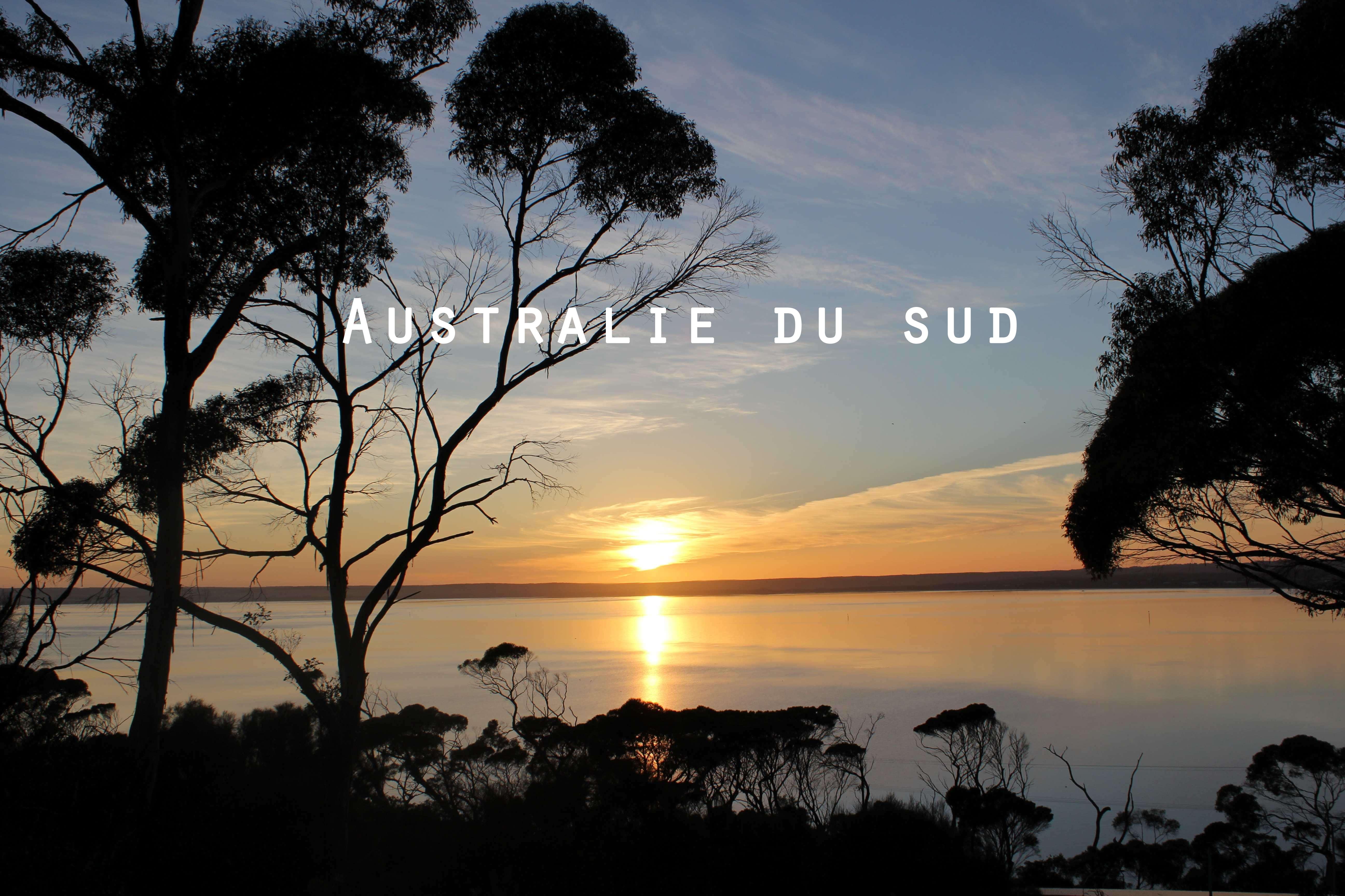 L'Australie du Sud : d'Adélaïde à Kangaroo Island en passant par l'outback