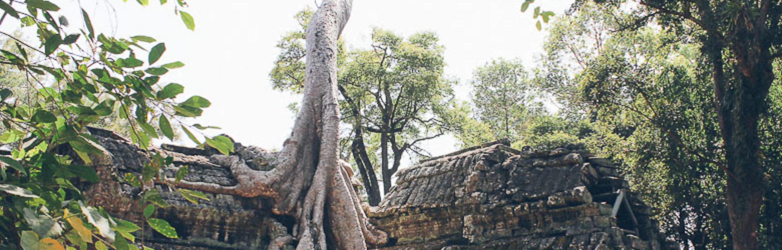 3 semaines au Cambodge : conseils pour bien préparer son voyage !